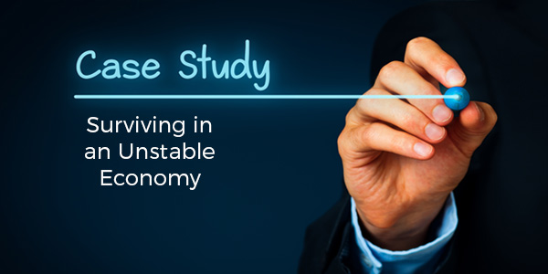 Surviving an Unstable Economy